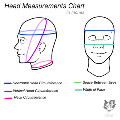 Head Measurements Diagram